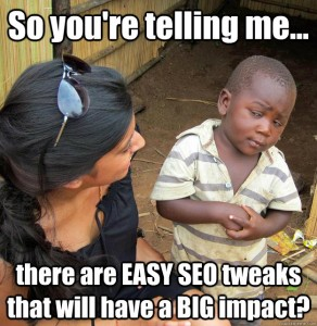 Meme, So you're telling me... there are easy seo tweaks that will have a big impact?