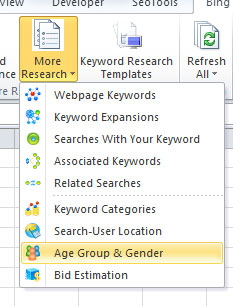 Bing-Keyword-Tool-Excel-Ribbon-age-and-gender-info