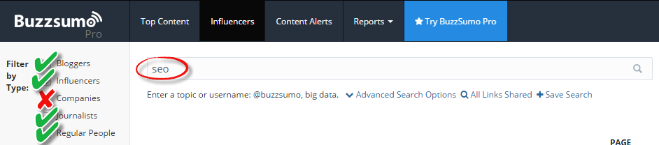 buzzsumo influencer search example